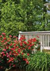 Paul Cottingham & Sons – Garden Maintenance & Landscapes
